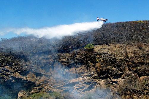 Aviones contra incendios en Zapopan