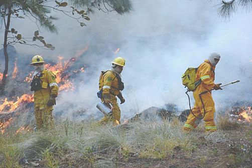 Capacitación en combate a incendios forestales