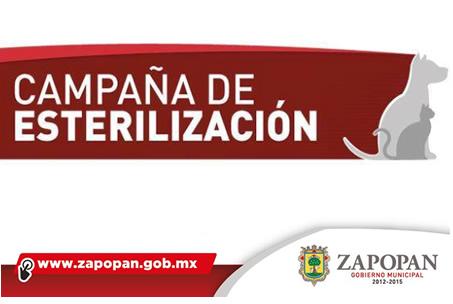Campaña_Esterilizacion