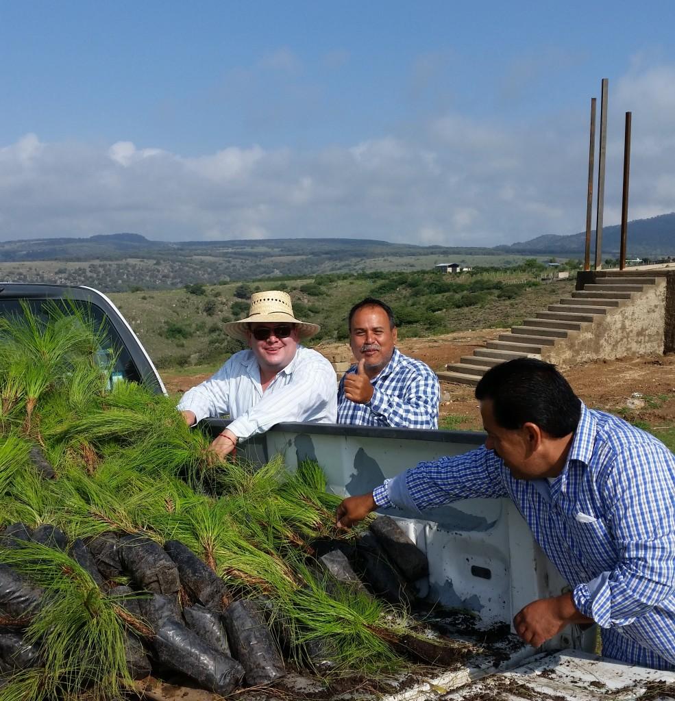 Programa de Reforestaciones 2016