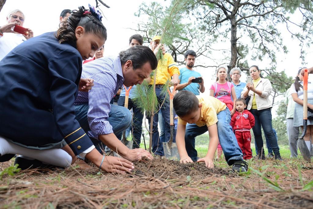 Inicio de la reforestación en el Bosque de la Primavera