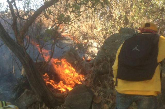 Incendio en el Cerro El Colli