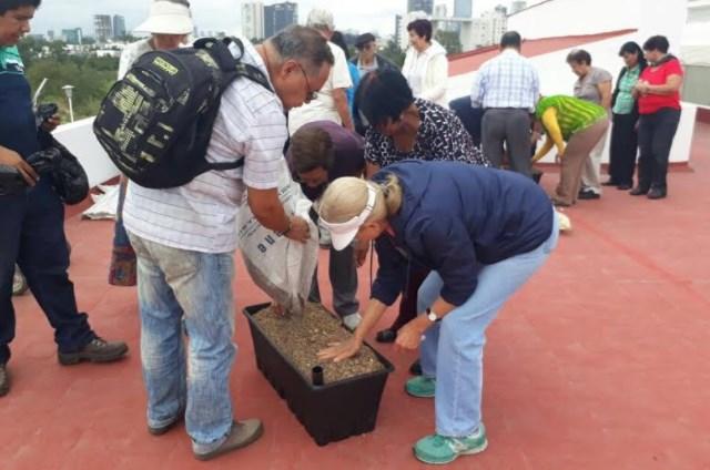 DIF Zapopan fomenta la agricultura urbana entre adultos mayores