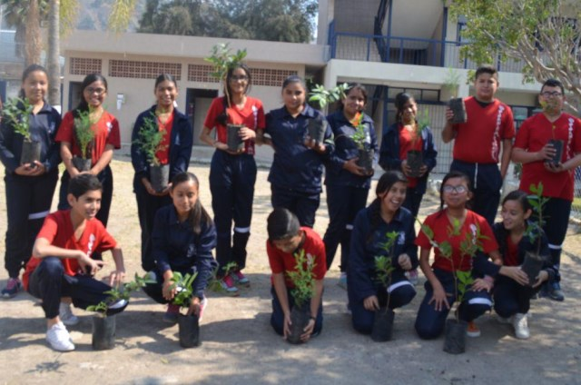 Programa de adopción de árboles en escuelas