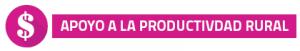 apoyo_productividad