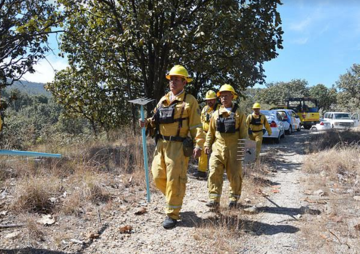Inicia Zapopan acciones para prevenir incendios forestales en bosque aledaño a Bugambilias