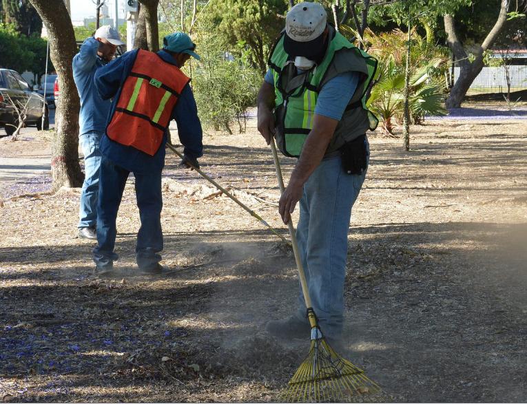 Realizan mantenimiento a las colonias Real Vallarta y Eucalipto Vallarta