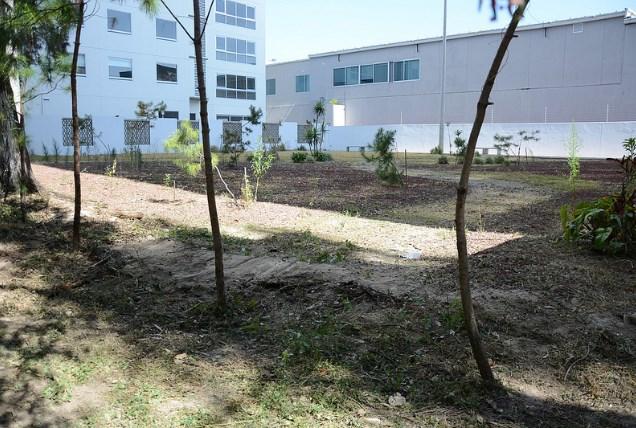 Recupera Zapopan áreas verdes para disfrute y apropiación ciudadana en Arcos de Guadalupe