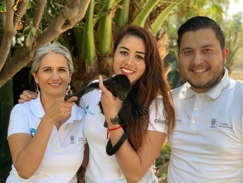 Zapopan traslada a cría de mono rescatada a zoológico de Tuxtla Gutiérrez, Chiapas