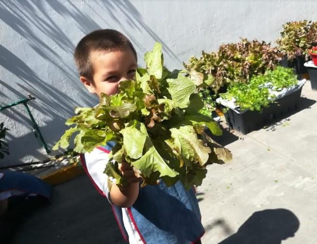 Iniciará cosecha de primavera en huertos infantiles de DIF Zapopan