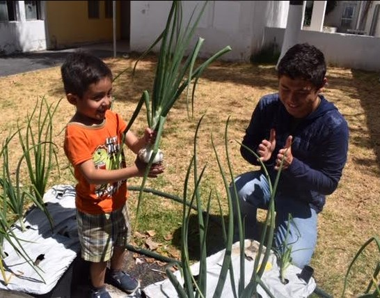 Niños del Centro de Autismo de DIF Zapopan cosechan huertos urbanos