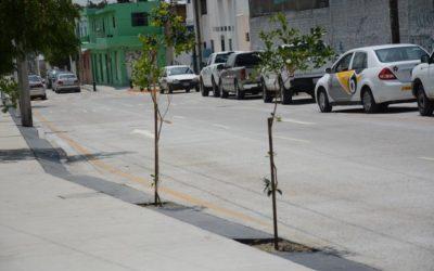 Entrega Zapopan pavimentación en concreto hidráulico en la colonia Miramar