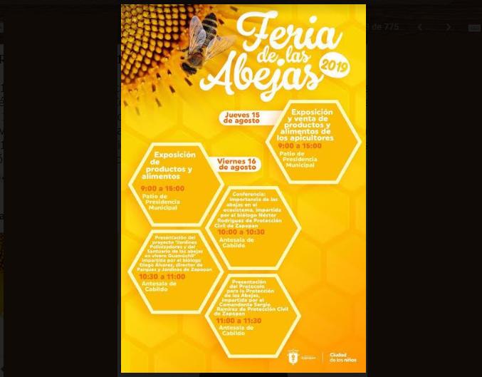 Realiza Zapopan Feria de las Abejas 2019