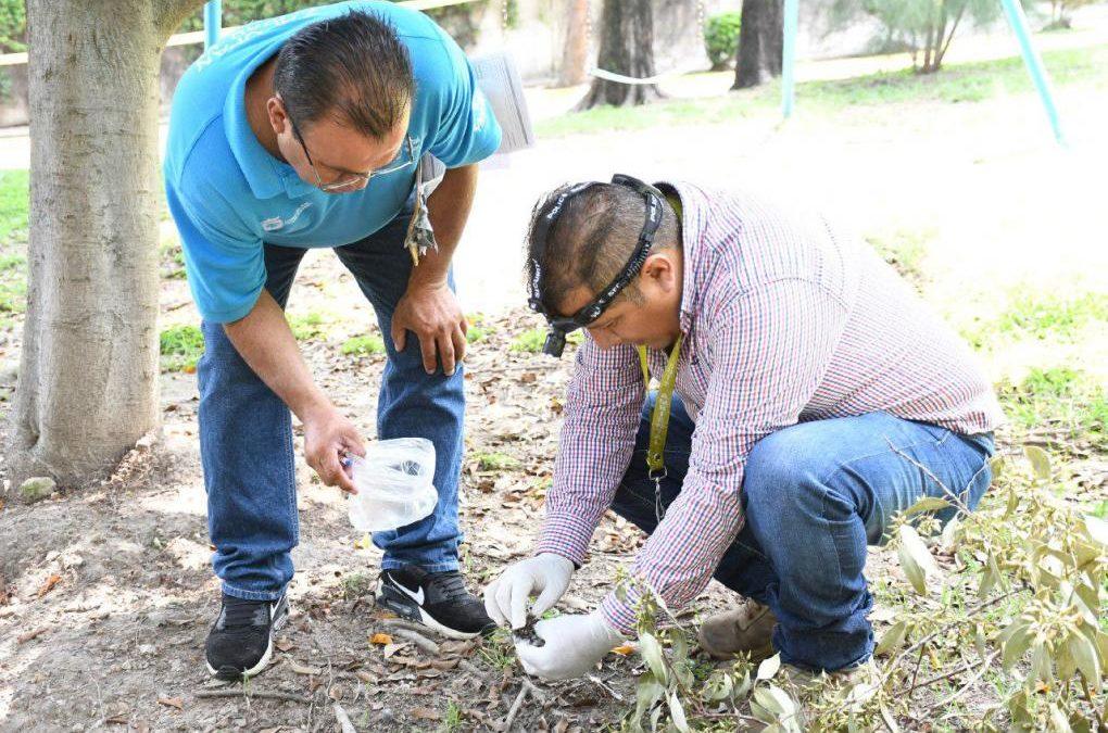Presenta Zapopan denuncia ante Fiscalía de Jalisco por muerte de aves